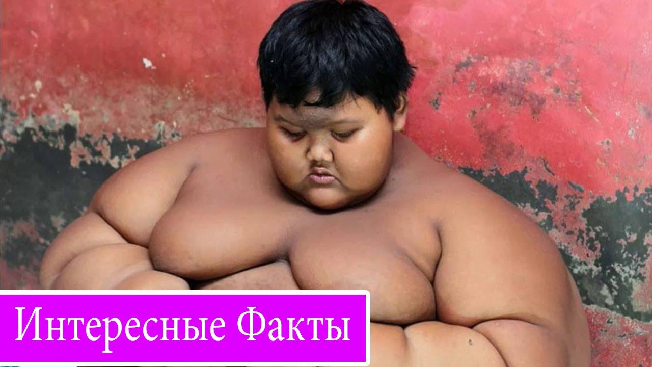 Только толстые голые бабы много фото, Порно фото толстых, Фото голых толстых баб 18 фотография