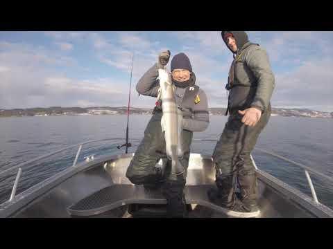 Boat Fishing In Norway (Skarnsundet)