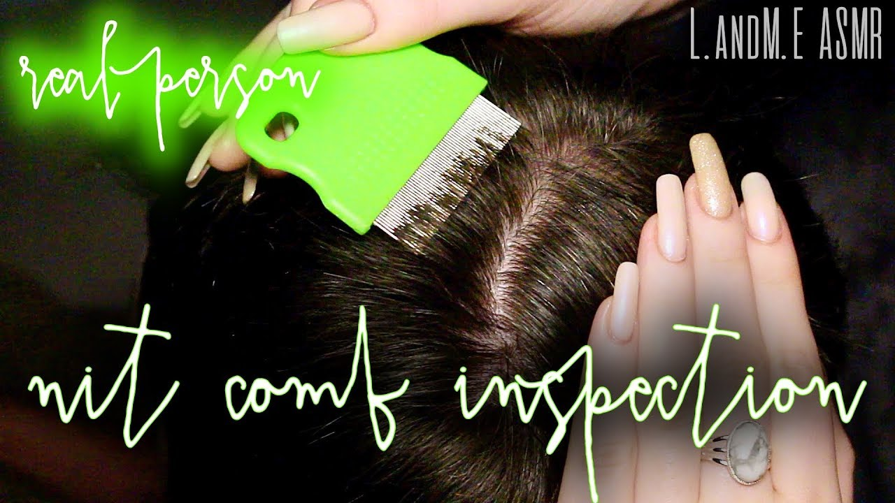 Asmr Real Person Scalp Hair Inspection With Lice Nit Comb 20Mins No Talking