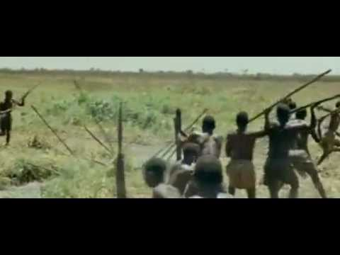 African hunting elephants and hippos