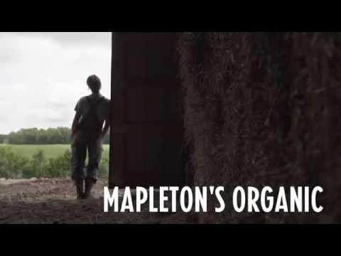 FeastON at Mapleton's Organic Dairy Farm
