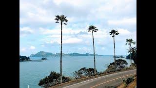 【南国シーサイド・ドライブ】宮崎・日南フェニックスロードは冬でも暑かった! South seaside drive in Miyazaki
