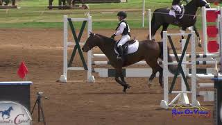 194S Kate Vorobieff on Mr  Perfect JR Beginner Novice Show Jumping Copper Meadows March 2018