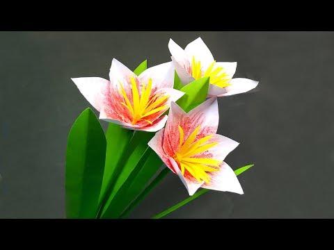 Easy & Beautiful Paper Flower Making! DIY Decoration Paper Flower | Jarine's Crafty Creation