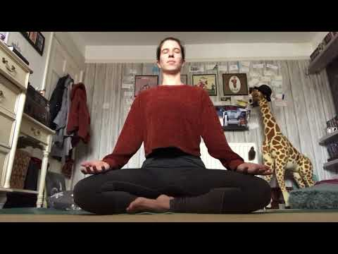 Introduction to Yin Yoga & 65 mins Yin Yoga: Root to Crown