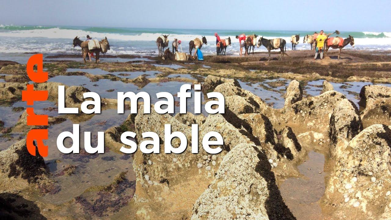 Maroc : razzia sur le sable | ARTE Reportage