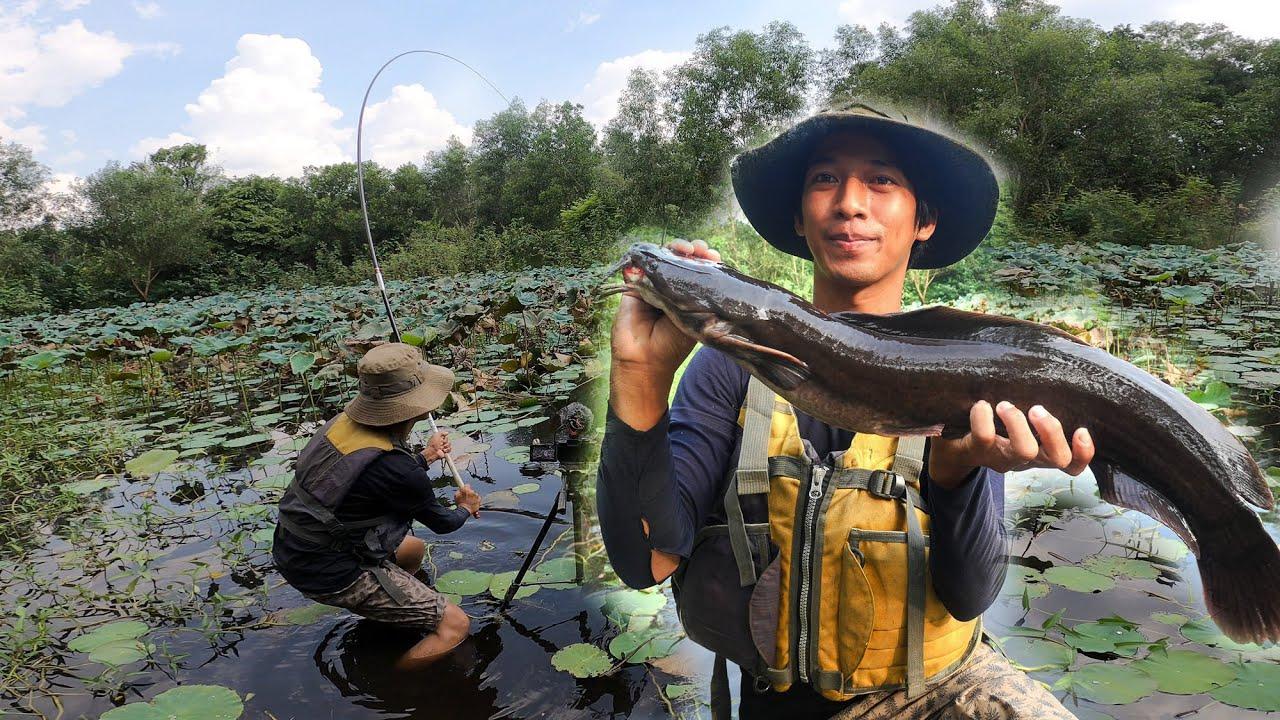 Câu Cá Ao Hoang Hơn 10 Năm Toàn Cá Khủng ✅