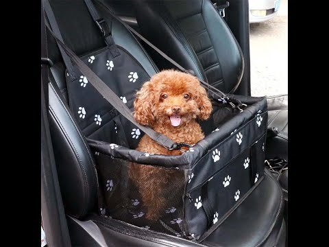 Dog Car Front Seat Cover