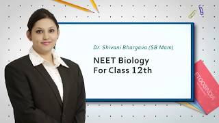 NEET Sexual Reproduction in Flowering Plants Video Lectures by SB Mam
