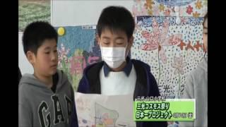 #302 三光コスモス祭り 日本一プロジェクト