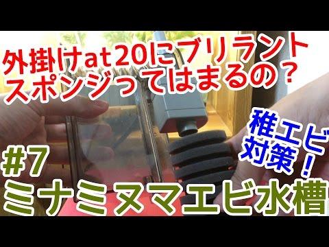 【エビアクアリウム】稚エビ対策!外掛けフィルターat20にブリラントスポンジって入る?【ミナミヌマエビ繁殖水槽#7】