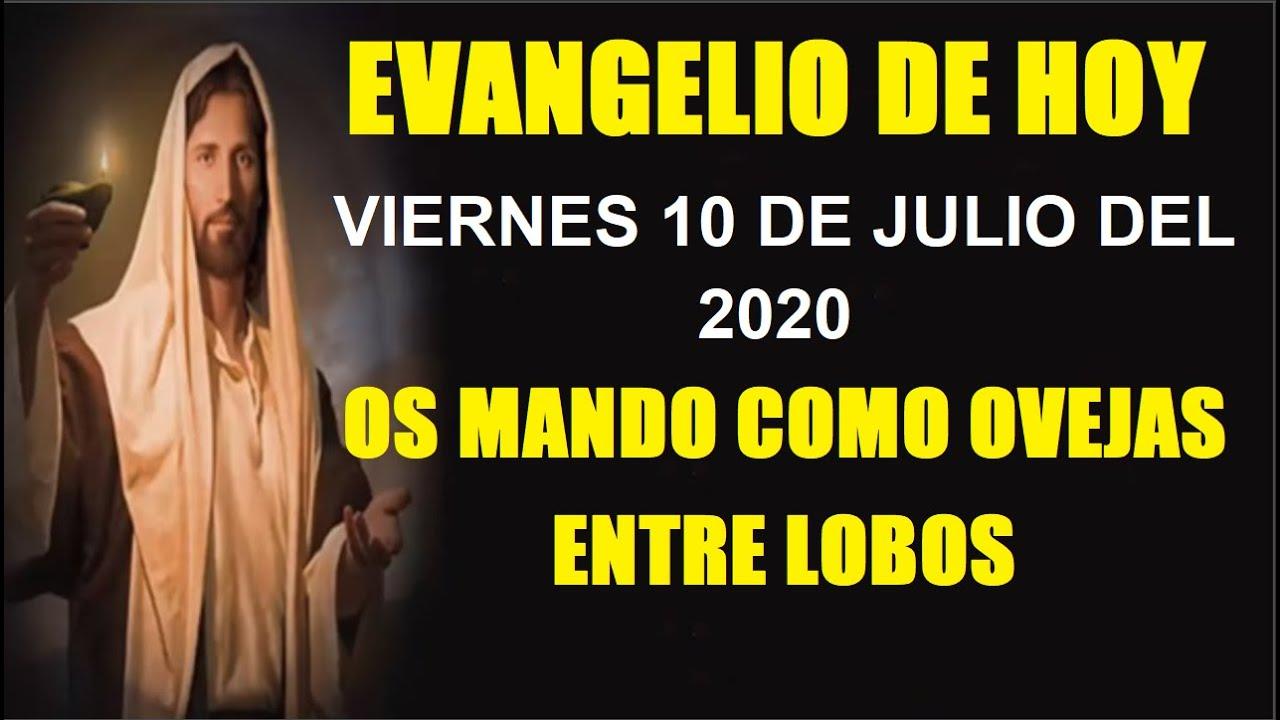 EVANGELIO DE HOY VIERNES 10 DE JULIO DEL 2020 OS MANDO COMO OVEJAS ENTRE LOBOS