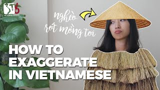 How to Exaggerate in Vietnamese | Learn Vietnamese with TVO