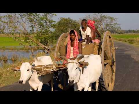 Orissa Indien