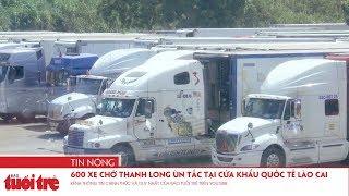 600 xe chở thanh long ùn tắc tại cửa khẩu quốc tế Lào Cai