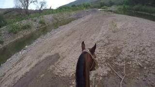 rancho las juntas jalisco mexico municipio de juchitlan