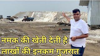गुजरात में कैसे होती है नमक की खेती | Gujarat