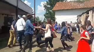 На Виноградівщині стартує винний фестиваль «Угочанська лоза»