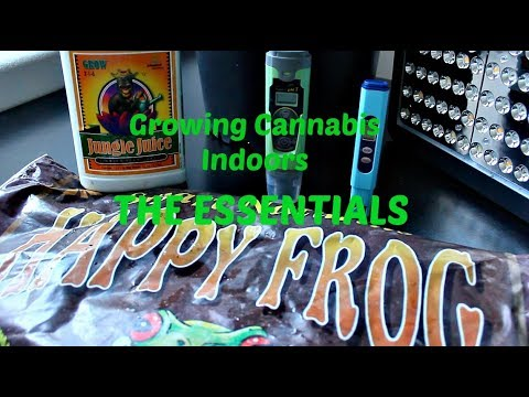 Growing Cannabis Indoors: Essential Grow Supplies Under $300