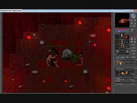 tibia selena dead dragon level 14