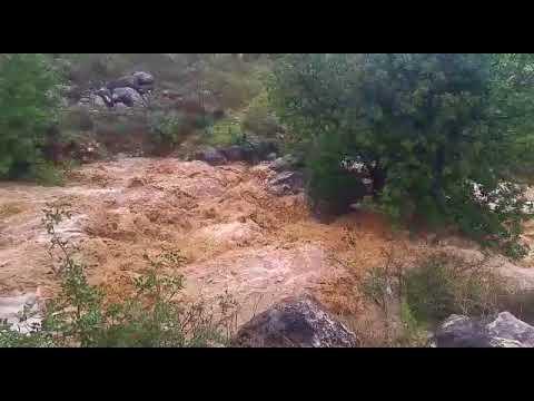 זרימת נהר הירדן בעקבות הגשמים