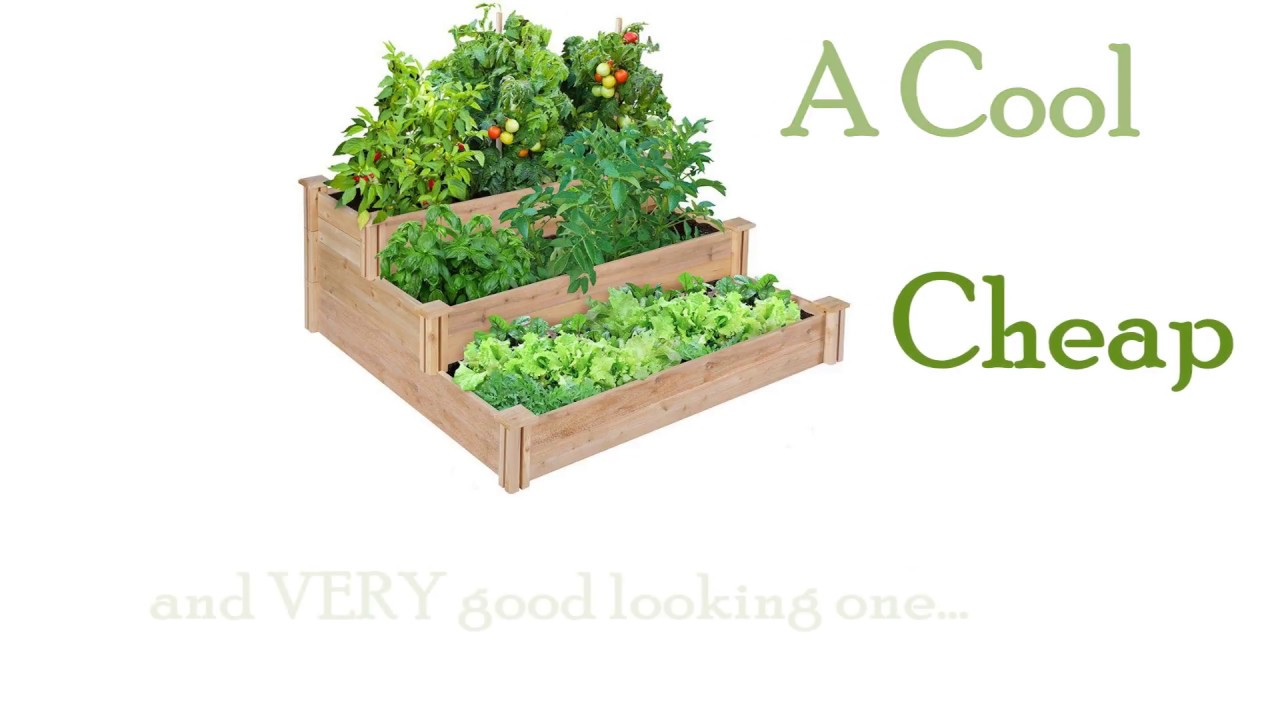 Best Garden Bed Box Greenes 4 Ft X 21 In Raised My Review