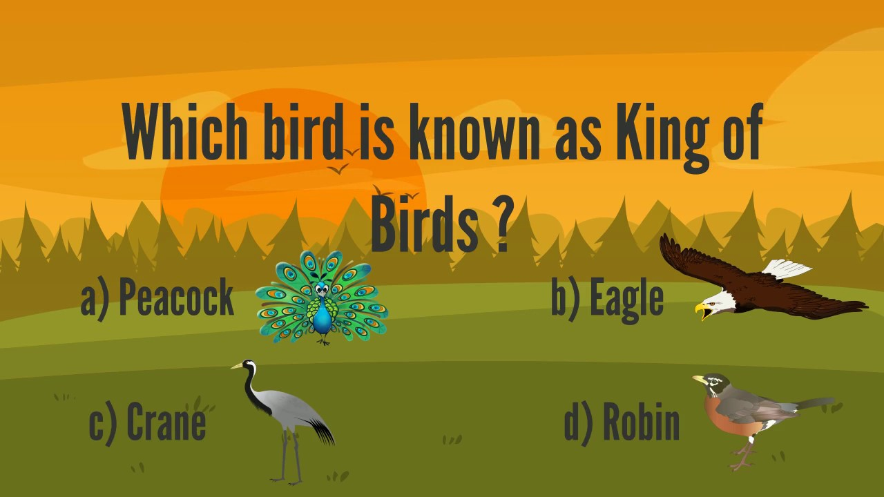 LilQuizWhiz- Flora and Fauna 2- Learning video for kids - Fun quiz for kids
