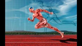 Какие упражнения чтобы похудеть