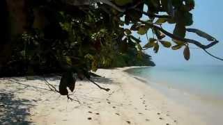Andamany, wyspa Havelock, Elephant Beach, marzec 2015