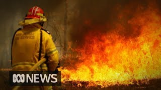 Nsw On Edge As Dangerous Fire Conditions Continue | Abc News