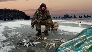 НАШЕЛ РЫБНУЮ ТРОПУ КОСЯКИ ЗУБАТКИ И СЕЛЁДКИ Зимняя рыбалка на САМОДУР и бородки