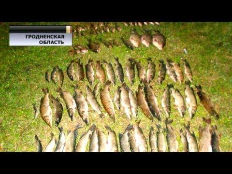 браконьерская ловля рыбы электроудочка отдыхает