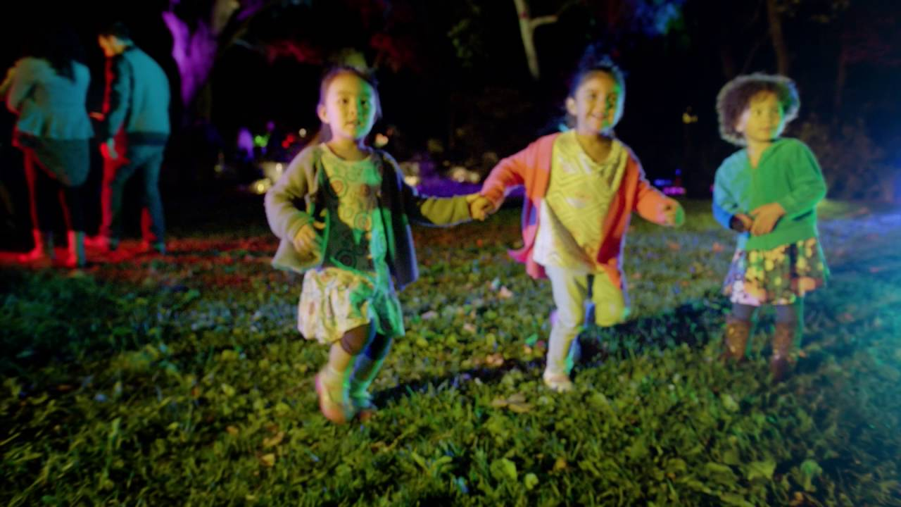 Enchanted Forest Of Light Debuts November 2016 Youtube
