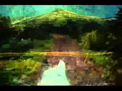 ion sotelecan murgulet cu coama rara