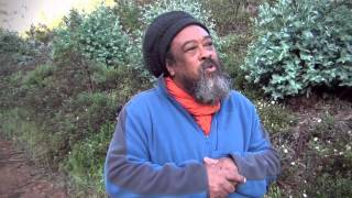 Spaziergang mit Mooji Baba  Dankgebet (Walk with Mooji Baba -Thank You)