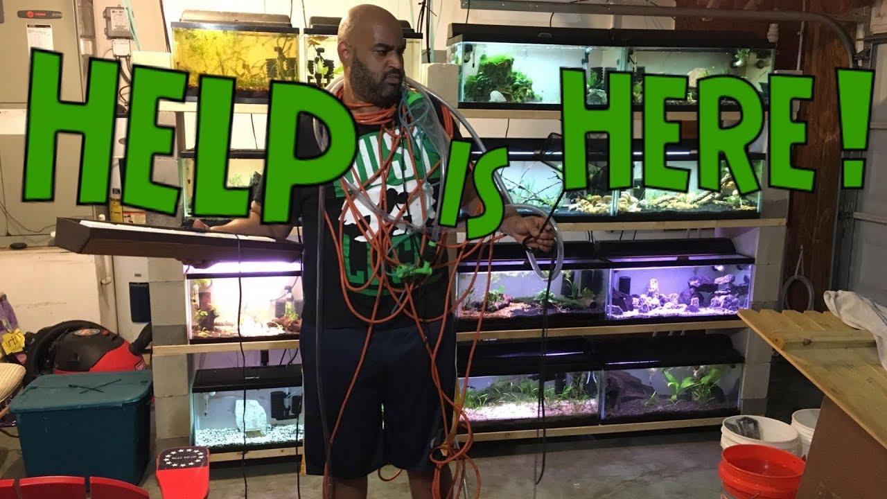 Easy Cable Management For Your Aquarium