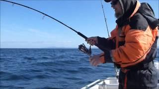 Halibut fishing in Barents Sea outside Mehamn