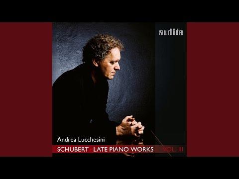 Piano Sonata No. 18 in G Major, D. 894 'Fantasia': III. Menuetto. Allegro Moderato