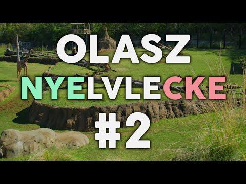 OLASZ NYELVLECKE #2