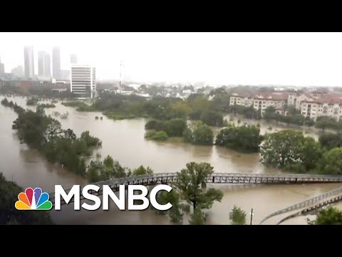 How Can You Help Hurricane Harvey Victims? | MTP Daily | MSNBC