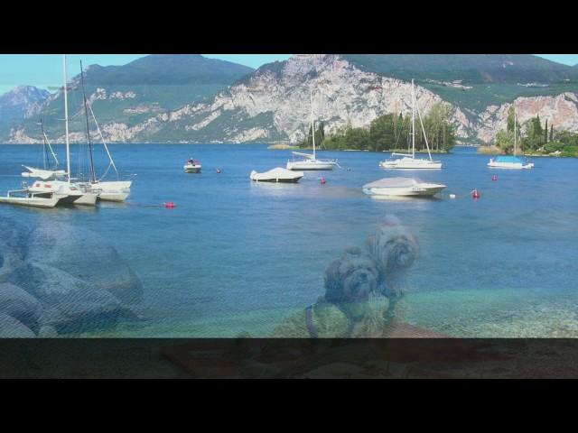 Gardasee   Ferienwohnung P 21