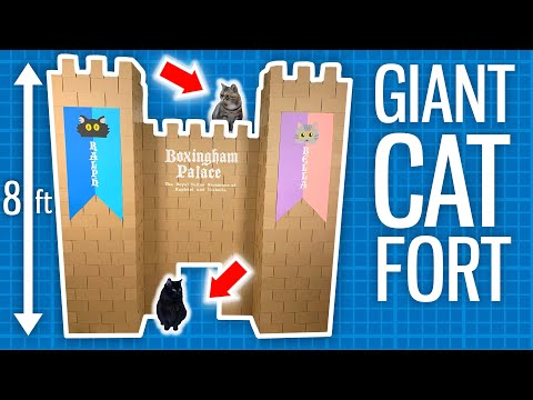 I Built a GIANT Castle for my Cats!
