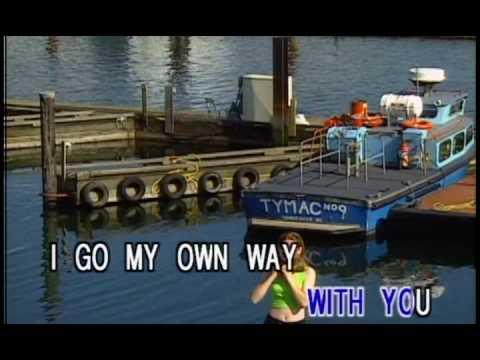 Theo Vaness-I go my own way (Karaoke)