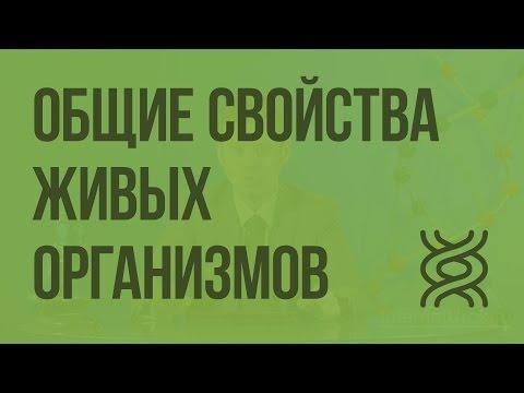 Вопрос: Прионы – живые организмы или нет?