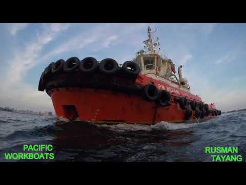 PACIFIC WORKBOATS HARBOUR TUG ( PW BERANI)