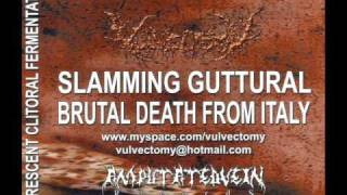 "VULVECTOMY - ""DEPILATED CUNT TWITCH"""