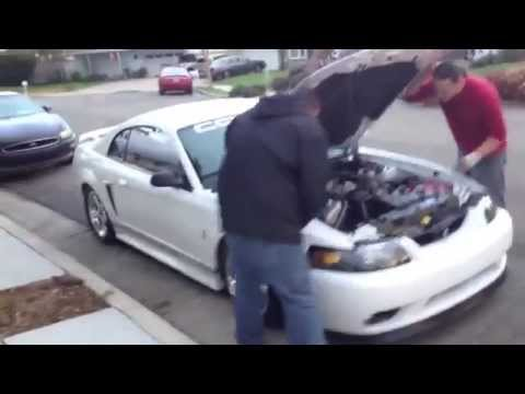 Details about the 2001 Mustang Cobra SVT For Sale - Day 1 - Part 2