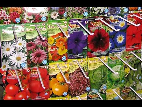 ТТ22 Семена цветов- огромный выбор. Цены и количество Вас приятно удивят.