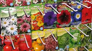 ТТ22 Семена цветов- огромный выбор. Цены и количество Вас приятно удивят.(Не заказывайте цветы в интернете, сначала оцените наш выбор семян. Сроки годности, качество, лучшие фирмы..., 2015-02-05T05:52:28.000Z)