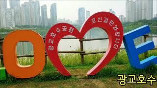 비오는 일요일 걷기 / 동네한바퀴 광교호수까지